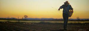 seed-sower